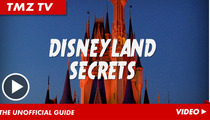 Disneyland Secrets -- Hardcore Tips on How to Dominate Mickey Mouse's Crib