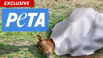 PETA to HBO -- The Blood of The 'Luck' Horses is On Your Hands