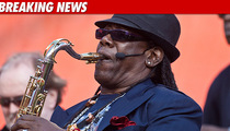 Saxophonist Clarence Clemons Suffers Stroke