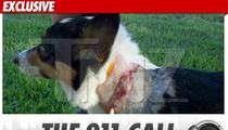 Jesse James' Dog Attack -- The 911 Call