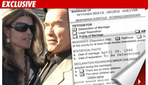 Maria Shriver Files for Divorce from Arnold
