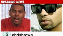 Chris Brown -- Racial, Gay Slurs in Twitter Feud