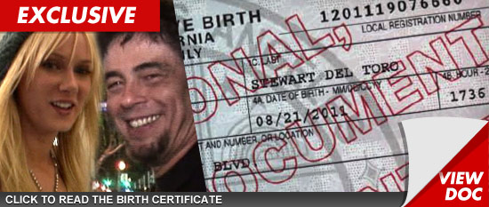 Del toro date of birth