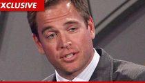 'NCIS' Star Sued Over BMW-Crushing Car Crash