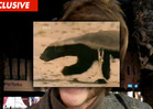 Honey Badger -- Voice and Face Behind the Viral Video Superstar Revealed!