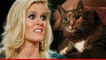 'Real Housewife' Alex McCord -- Real Housecat Really Run Over by a Car