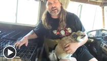 Lattimer from 'The Program' -- I GOT MY DOGS BACK!!!