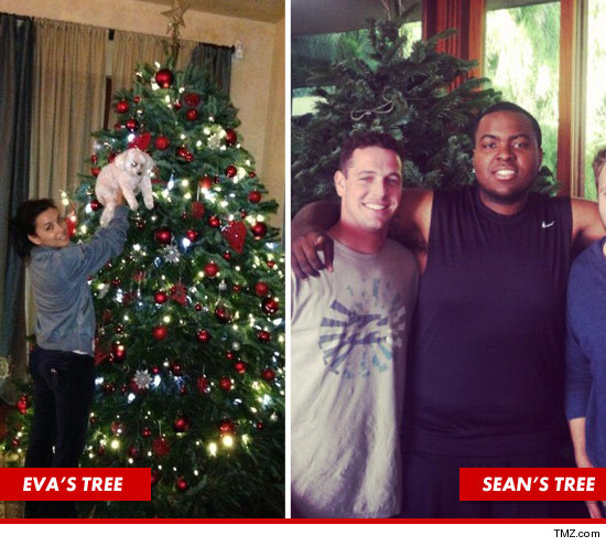 and finally were told sean kingston actually sent his mom to do all the heavy lifting asking her to pick up a 9 ft nordman from the famous lot - Kiefer Sutherland Christmas Tree