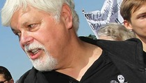 'Whale Wars' Star -- I Didn't Sink That Boat