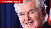 Newt Gingrich Lawsuit -- Sued for Assault and Battery