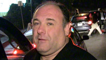 James Gandolfini -- Actor's Body Returned Home to New Jersey