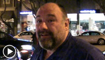 James Gandolfini -- Thanks Boss ... For the Good Times