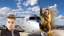 Justin Bieber -- Monkey Business in Miami Over Private Jet