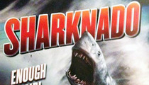 Sharknado -- SEQUEL APPROVED ... Sharks to Invade NYC