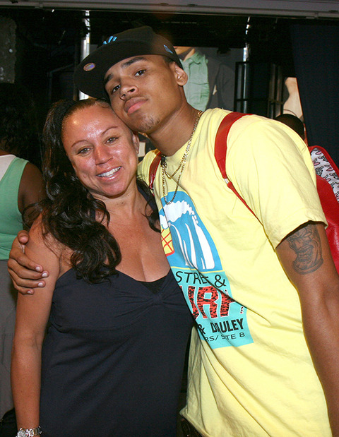 Chris Brown was visited by his mother in rehab. She urged him to stay in treatment for a longer period resulting in him throwing a rock at her car.