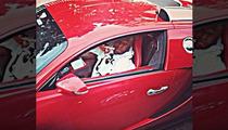 Birdman Gives Turkeys to Poor People ... Drives Off In $2.5 Million Bugatti