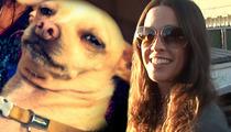 Alanis Morissette -- You Oughta Know ... I GOT MY DOG BACK!!!