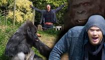 Kellan Lutz -- I'm All About Gorilla Warfare