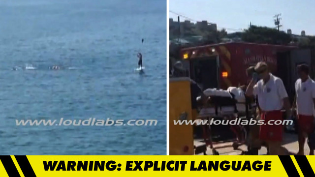 Great White Shark Attack Insane Video