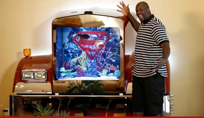 Shaquille o 39 neal even my fish are diesel shows off for Atm fish tank