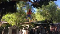 James Cameron -- Terrorizing Malibu With Front Yard Horror Show! (PHOTOS)