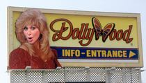 Dolly Parton -- Dollywood Sued After Woman Suffers Brain Injury on Swing Ride