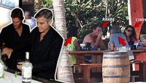 George Clooney -- I'll Have a Boooze Christmas