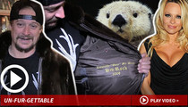 Kid Rock -- This One's for Pam ... No Otter Way to See It (TMZ TV)