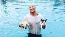 Dwayne Johnson -- My Bulldog Pup Sank Like a Rock (PHOTO)