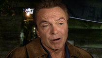 David Cassidy -- Charged in Hit and Run Wreck