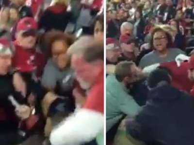 Packers vs Cardinals -- Brawl in the Stands ... Crazy Video