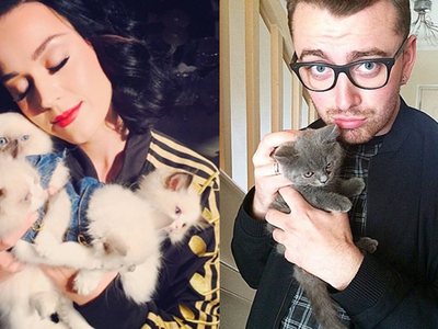 Celebrity Cat Lovers -- Cuddle Up To Caturday