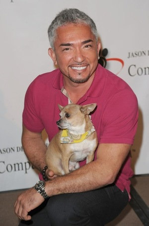 Cesar Millan's Photos