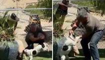 Cesar Millan -- Dog & Pig Method 'Just Plain Dumb' ... Claims Veteran Trainer