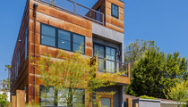 Don Cheadle and Girlfriend -- Our Remodeled Eco-Friendly Crib ... Yours For $2.45M! (PHOTOS)