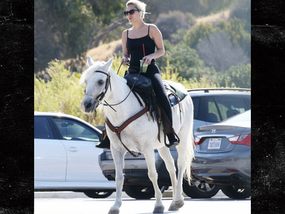 Lady Gaga -- Me and The Horse I Rode In On (PHOTO)