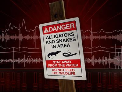 Disney Alligator Attack -- 911 Call (AUDIO)