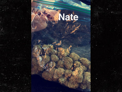Nate Diaz -- Snapchats Bag of Weed ... That's A Lotta Nugs! (PHOTO)