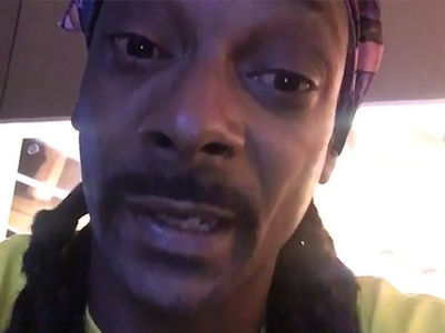 Snoop -- Steelers Killed My Buzz ... Ain't Been the Same Since Polamalu (VIDEO)