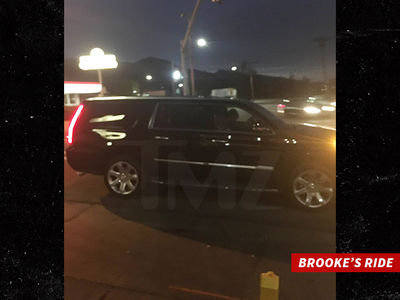 Charlie Sheen -- Kids Spotted with Brooke at Car Wash ... Search Called Off (PHOTO)
