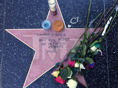 Carrie Fisher's Makeshift Walk of Fame Star Gets to Stay ... For Now (PHOTO)