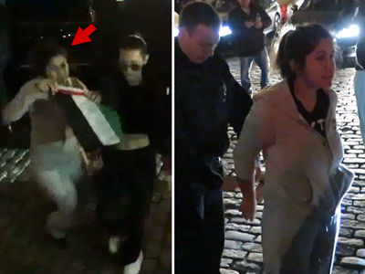 Bella Hadid & Kendall Jenner Bum-rushed by Flag Waving Fan, Fan Gets Cuffed (VIDEO)