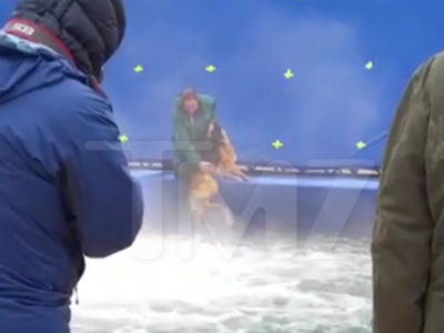 'A Dog's Purpose' Actor, Director Shaken Over Terrified Dog Video