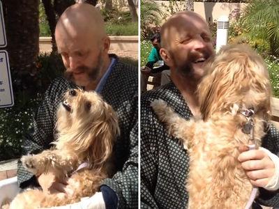'Harry Potter' Actor Reunited With Dog After Near-Fatal Car Crash (VIDEO)