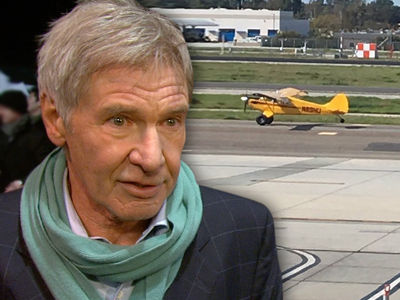 Harrison Ford, Some FAA Inspectors Think He Got Off too Easy