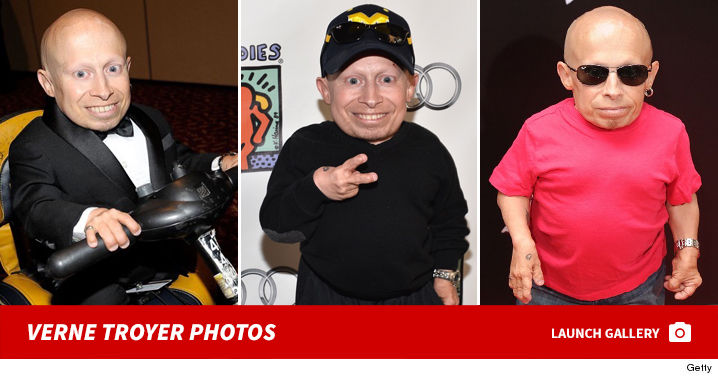 verne troyer subway