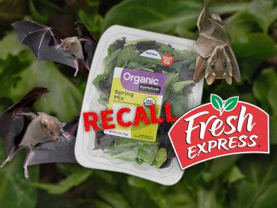 Dead Bat Inside Walmart Salad Forces Recall