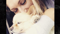 Brooke Hogan Finds Lost Dog Safe and Sound!
