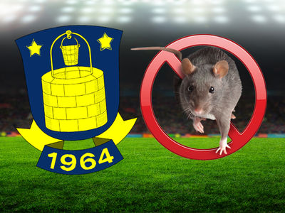 Denmark Soccer Team Fined After Fans Throw Dead Rats at Players