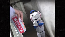 New York Mets Fire Mr. Met After Mascot Gives Fans Middle Finger (VIDEO)